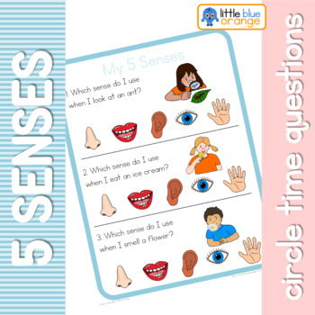 My 5 senses circle time questions