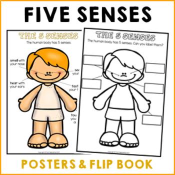 My 5 senses flip book worksheets and anchor chart