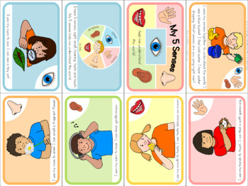 My 5 senses  mini book (simplified version)
