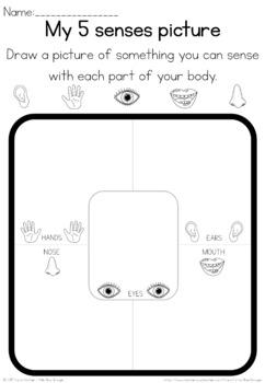 My 5 senses observation sheet