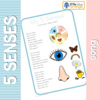 My 5 senses song