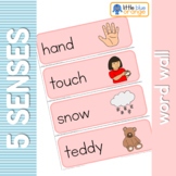 My 5 senses word wall