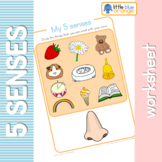 My 5 senses worksheets
