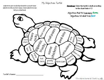 My Adjectives Turtle!