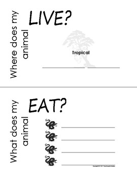 My All About Anacondas Book / Workbook - (Tropical Rain Forest/Jungle Animals)