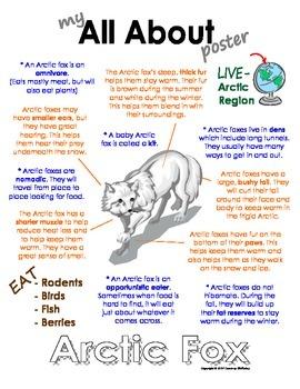 My All About Arctic Fox Book - (Arctic/Polar Animals)