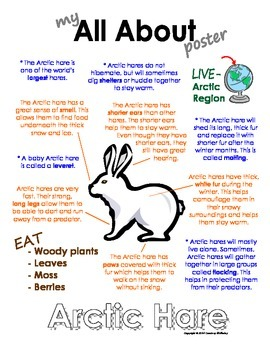My All About Arctic Hare Book - (Arctic/Polar Animals)