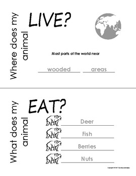 My All About Brown Bear Book / Workbook - (Forest / Woodland Animals)