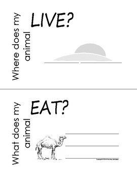 My All About Camels Book / Workbook - (Desert Animal / Dry climate)