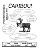 My All About Caribou Book - (Arctic/Polar Animals)