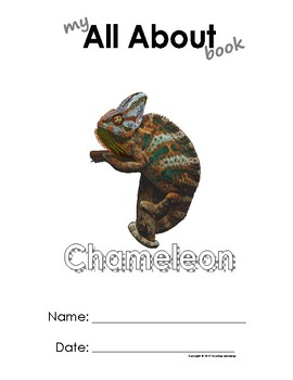 My All About Chameleons Book / Workbook - (Tropical Rain Forest/Jungle Animals)