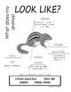 My All About Chipmunks Book / Workbook - ( Forest / Woodland Animals )