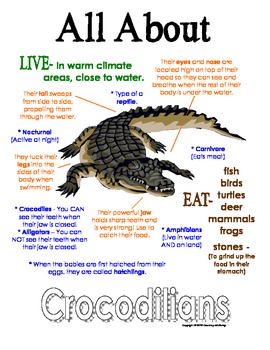 My All About Crocodilians Book / Workbook - African Animal Unit Study