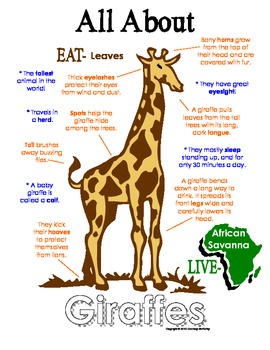 My All About Giraffes Book Workbook African Animal Unit Study