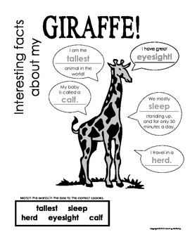 My All About Giraffes Book / Workbook - African Animal Unit Study