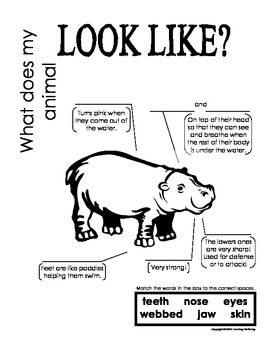 My All About Hippopotamuses Book / Workbook - African Animal Unit Study