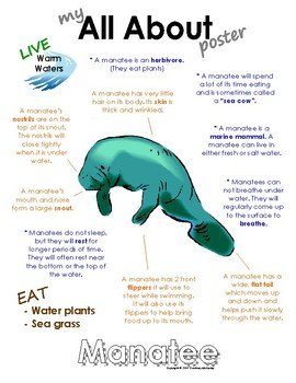 My All About Manatees Book / Workbook - (Marine Mammals / Animals)