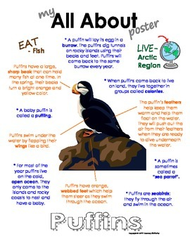 My All About Puffins Book - (Arctic/Polar Animals)