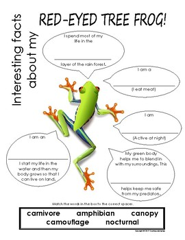 My All About Red-Eyed Tree Frog Book / Workbook - (Tropical Rain Forest Animals)