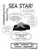 My All About Sea Stars (starfish/star fish) Book - Ocean Animal Unit Study