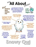 My All About Snowy Owl Book - (Arctic/Polar Animals)