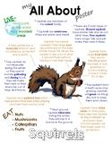 My All About Squirrels Book / Workbook - (Forest / Woodland Animals)