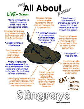 My All About Stingrays (sting ray) Book - Ocean Animal Unit Study