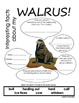 My All About Walrus Book - (Arctic/Polar Animals)