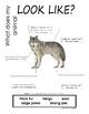 My All About Wolf Book / Workbook - (Forest / Woodland Animals)