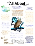 My All About Woodland (Forest) Animal Books / Workbooks - Bundle Pack I (5bks)