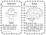 Human Body Mini Book