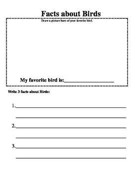 My Animal Notebook