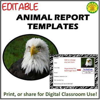 Animal Report -EDITABLE for Print or Digital Use (Summer Sale Discount!)