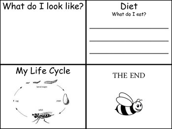 My BEE Book