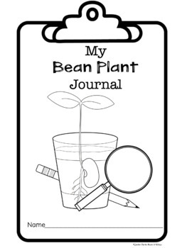 My Bean Plant Journal (science notebook)