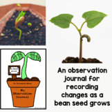 My Bean Plant Observation Journal
