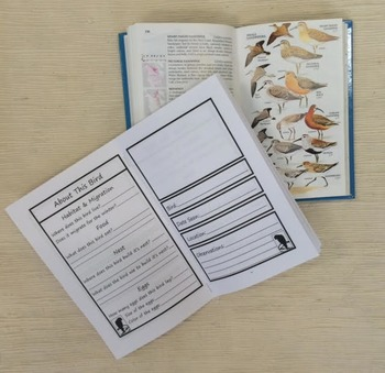 My Bird Observation Journal