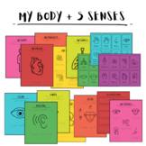 My Body + Five Senses Lesson Plan
