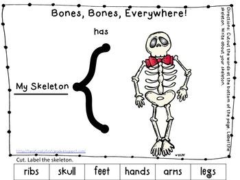 My Body, My Skeleton! Common Core Mini Unit