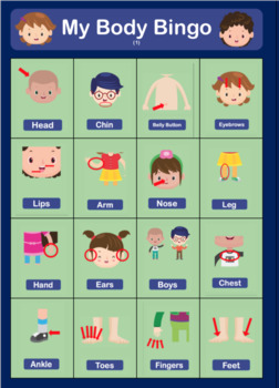 My Body - Poster, Flashcards, Bingo & Worksheets