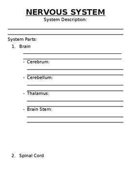 My Body Systems Book