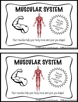 My Body Systems Parts of the Body Mini-Book