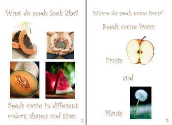 My Book of Seeds:  Spring, Gardening, Planting
