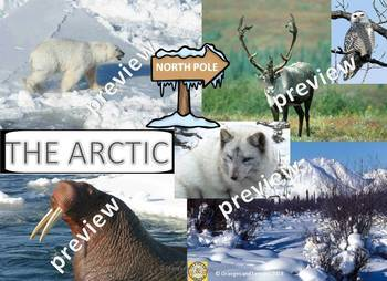 My Book of The Arctic  - The Study of a Polar Region