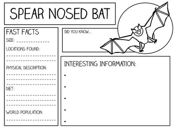 My Booklet of Bats ~ Research and Note-Taking Packet