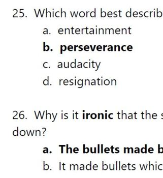 My Brother Sam is Dead - A Literature Circle ; Printables ; questions ; vocab
