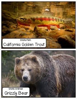 California State Symbols (Book & Picture Cards)