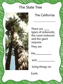 My California Symbols Book