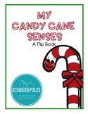 My Candy Cane Senses: A Flip Book