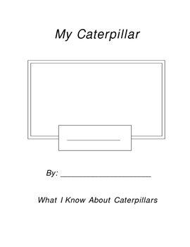 My Caterpillar Notebook